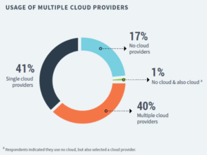 DORA Report_Usage of Cloud Providers
